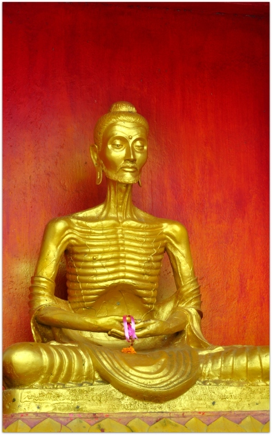 Reflections of Buddha after years of rigorous penance