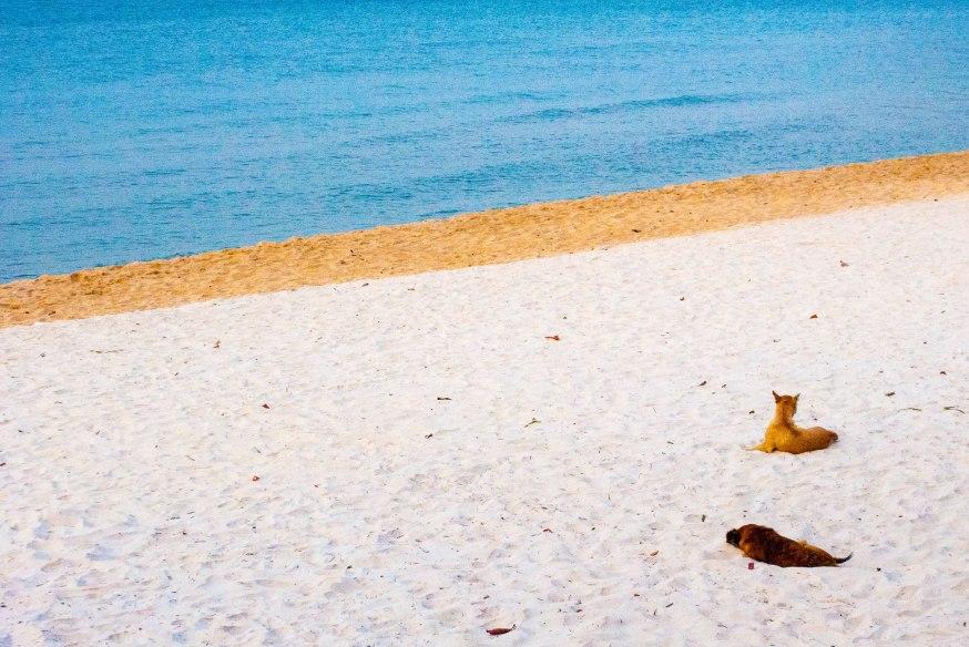 Keep beach, Kep, Cambodia