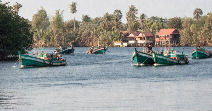 Every evening a flotilla of Cham fishing boats chug out to sea for a night of fishing. And they chug back down the Kampot river to home in the morning....