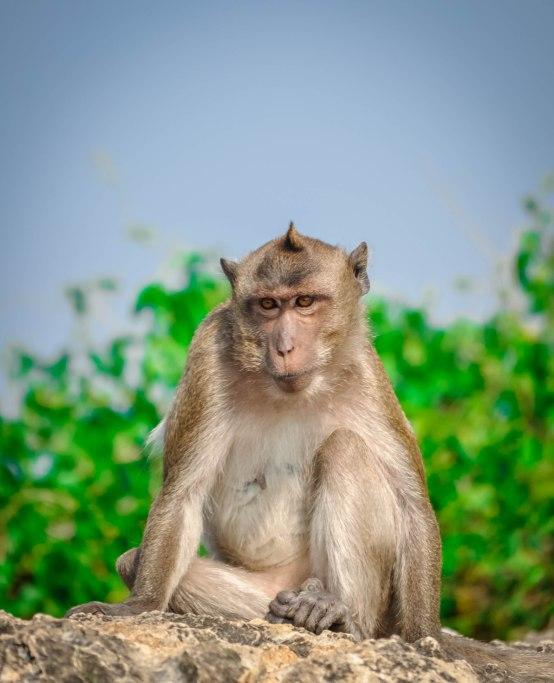 Prachuap Khiri Khan, Thailand